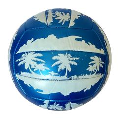 Мяч волейбольный Minsa арт. 5-0026 (blue)