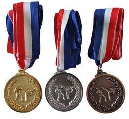 Медали (каратэ)